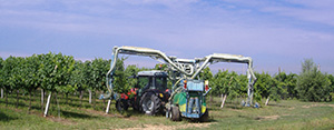 Low volume sprayers